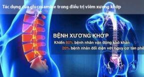 hiệu quả của glucosamine trong điều trị viêm xương khớp